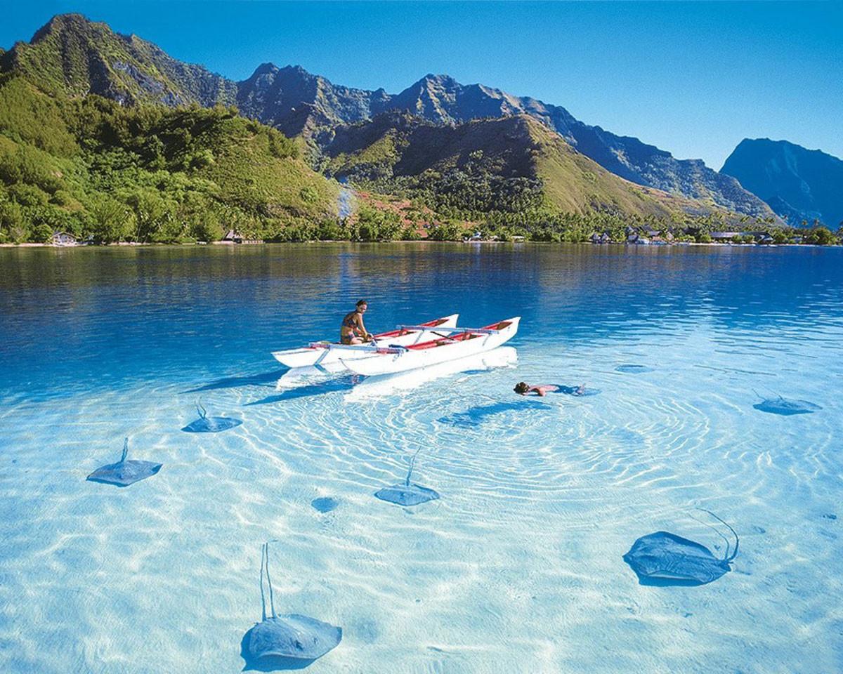 1.  Курорт Пунта Кана, Доминикана в мире, вода, планета