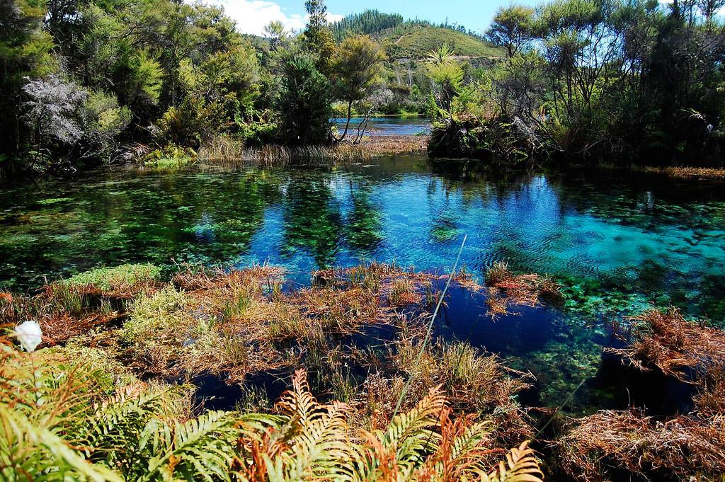 29.  Озеро Пупу Спрингс, Новая Зеландия в мире, вода, планета