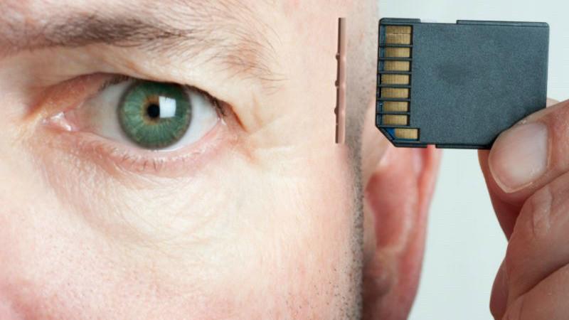 7. Потеря памяти. Защитные системы, организм, человек