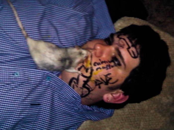 Самые жесткие приколы над пьяными алкоголь, люди, пьяный