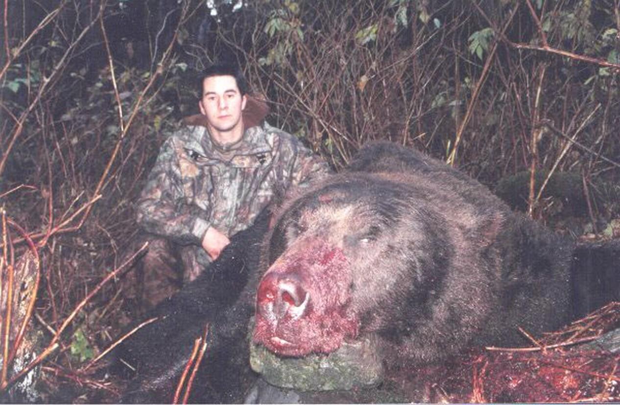 Самый большой медведь. Самые большие животные, животные, рекорды