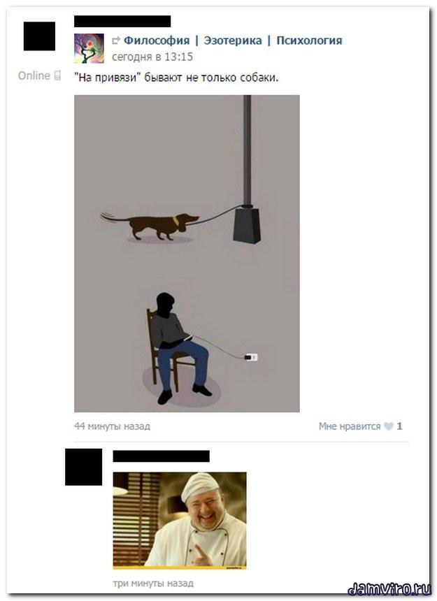 Смешные коменты из соц.сетей соц сети, юмор