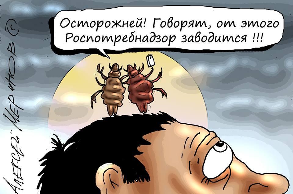 6. Помните новость про то, что Роспотребнадзор советовал не делать селфи, дабы не плодить вшей? Алекксей Меринов, карикатуры, рисунки