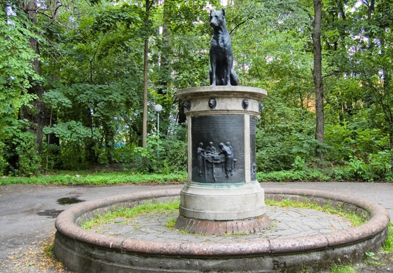Памятник Собаке Павлова в Санкт-Петербурге памятники, памятники россии