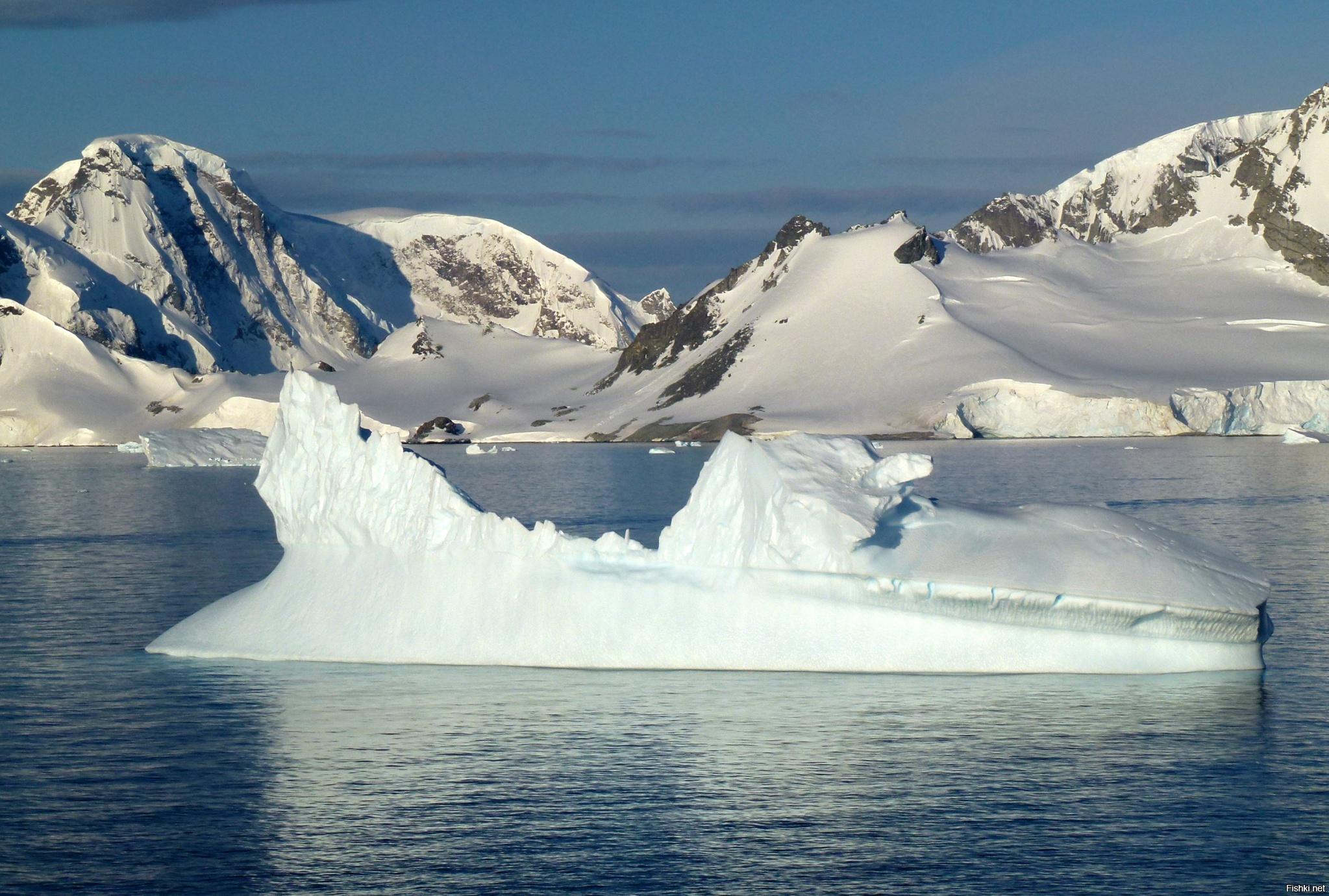 как выглядит антарктида фото нынешнее