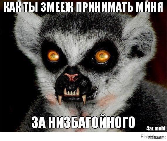 Узбагоинчики Фото