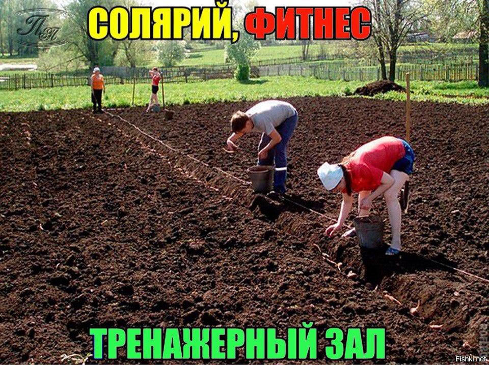 Смешные картинки с надписями про дачу огород