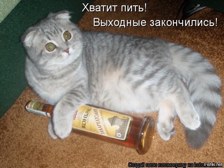 Завтра будем пить картинки