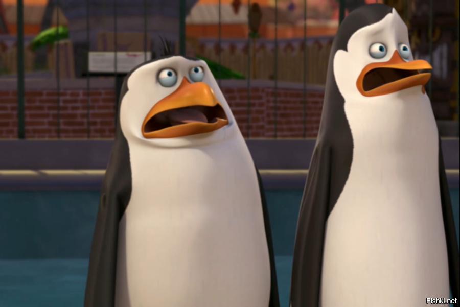 Приколы пингвины из мадагаскара картинки