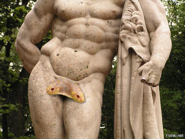 мужские гениталии большие находясь стороне