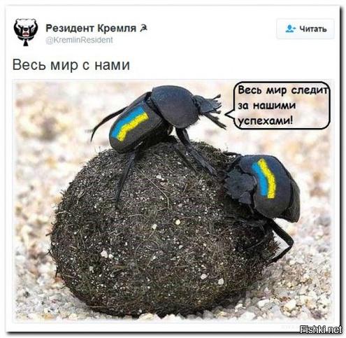https://s.fishki.net/upload/users/2017/04/20/1333391/e4244c607491d83a403dff7af6f1db48.jpg