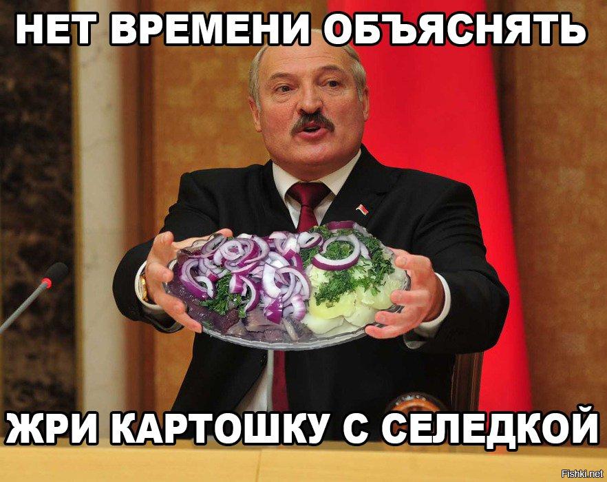 Лукашенко картинки приколы