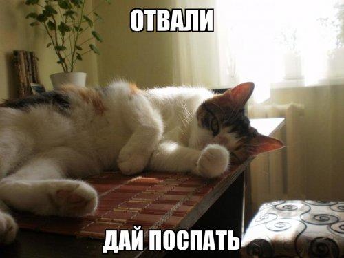 Картинки надписью, картинки спи давай