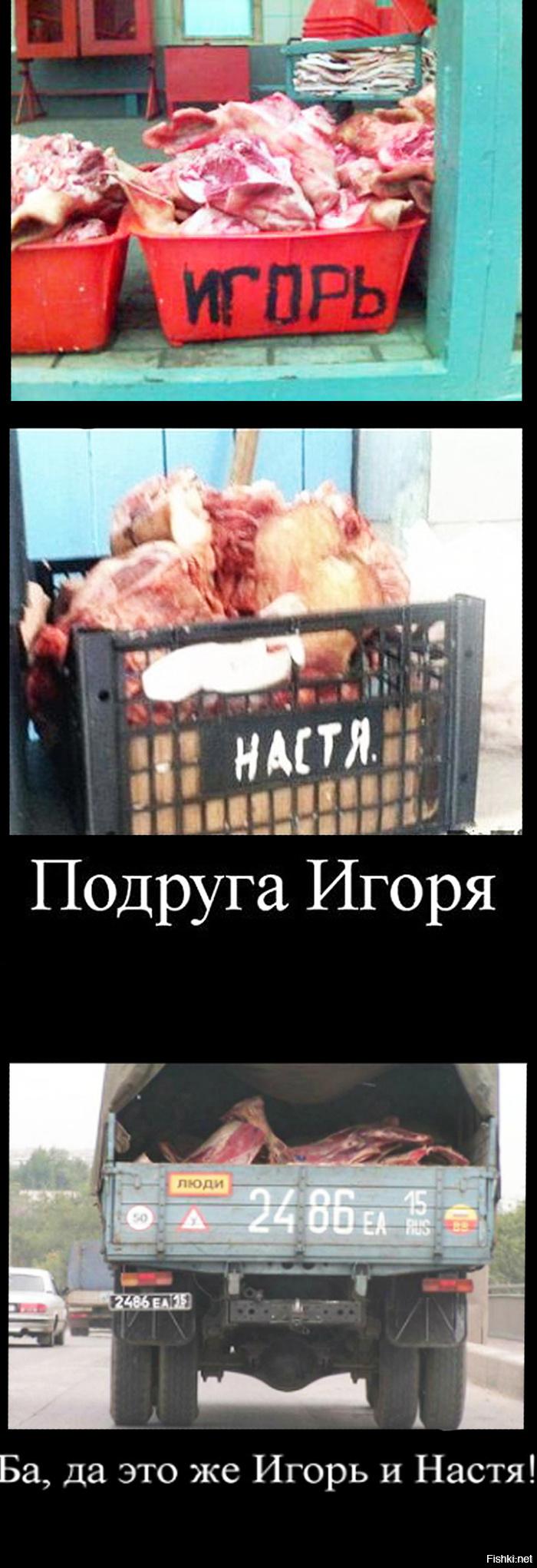 Картинки прикол про игоря, петрозаводск столица