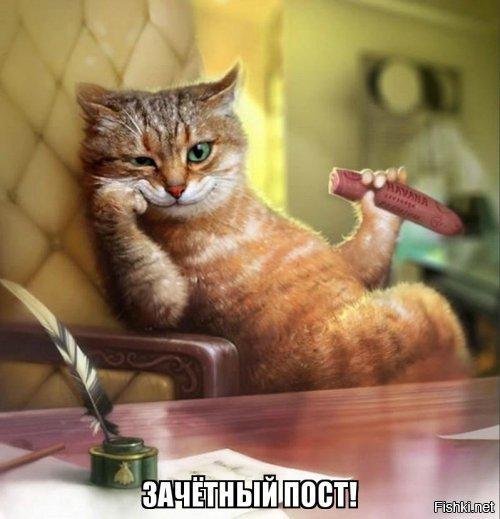 s.fishki.net