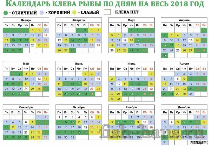 Клев рыбы по лунному календарю 2019