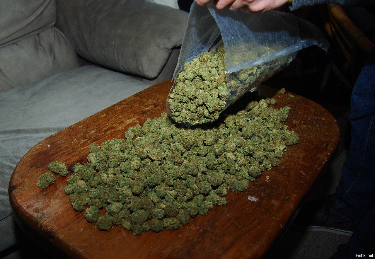Бошки марихуаны фото купить семена конопли в липецке