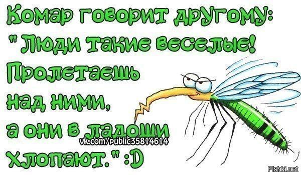 вот последний картинки с фразами про комаров смешные каждой картинкой