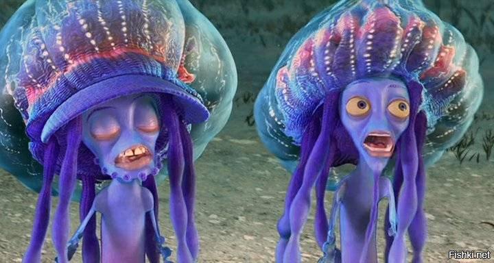Смешные картинки медуз
