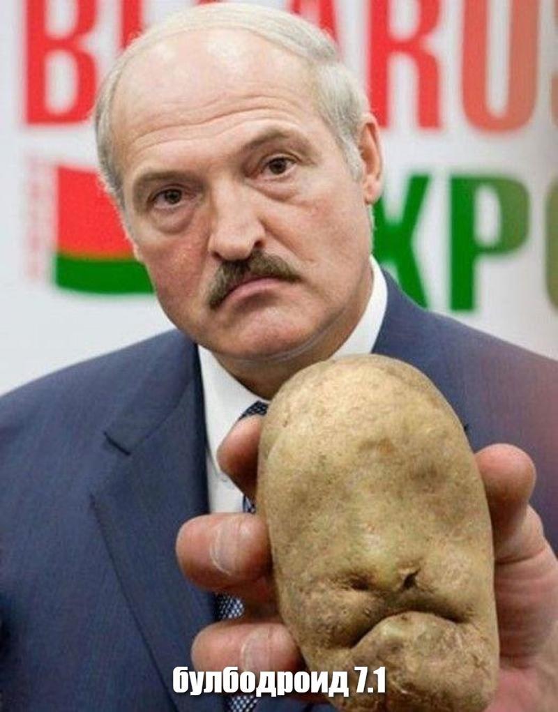 Открытки, прикольные картинки белоруссия