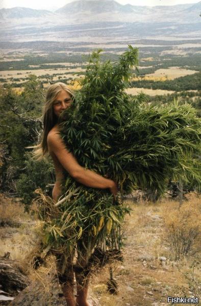 Девушка с букетом конопли никотин вреднее марихуаны