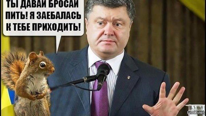 Картинка порошенко с белочкой