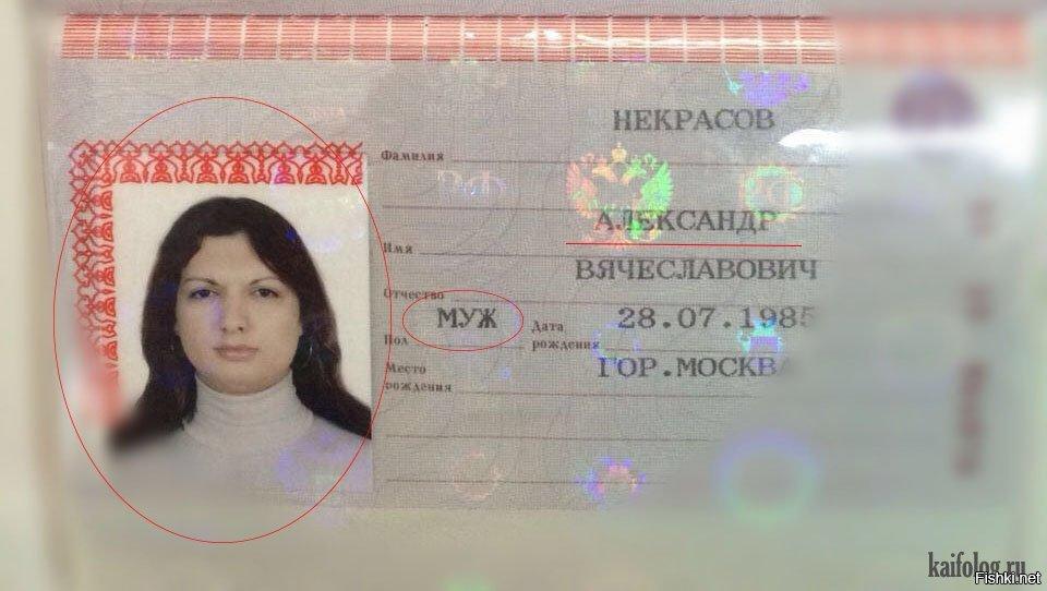 Картинки, прикольный паспорт картинки