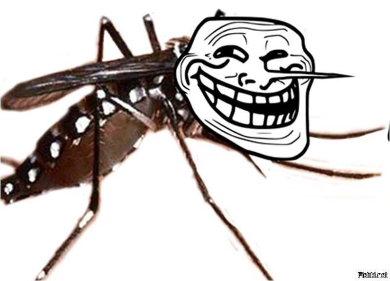 Приколы, картинки комары приколы