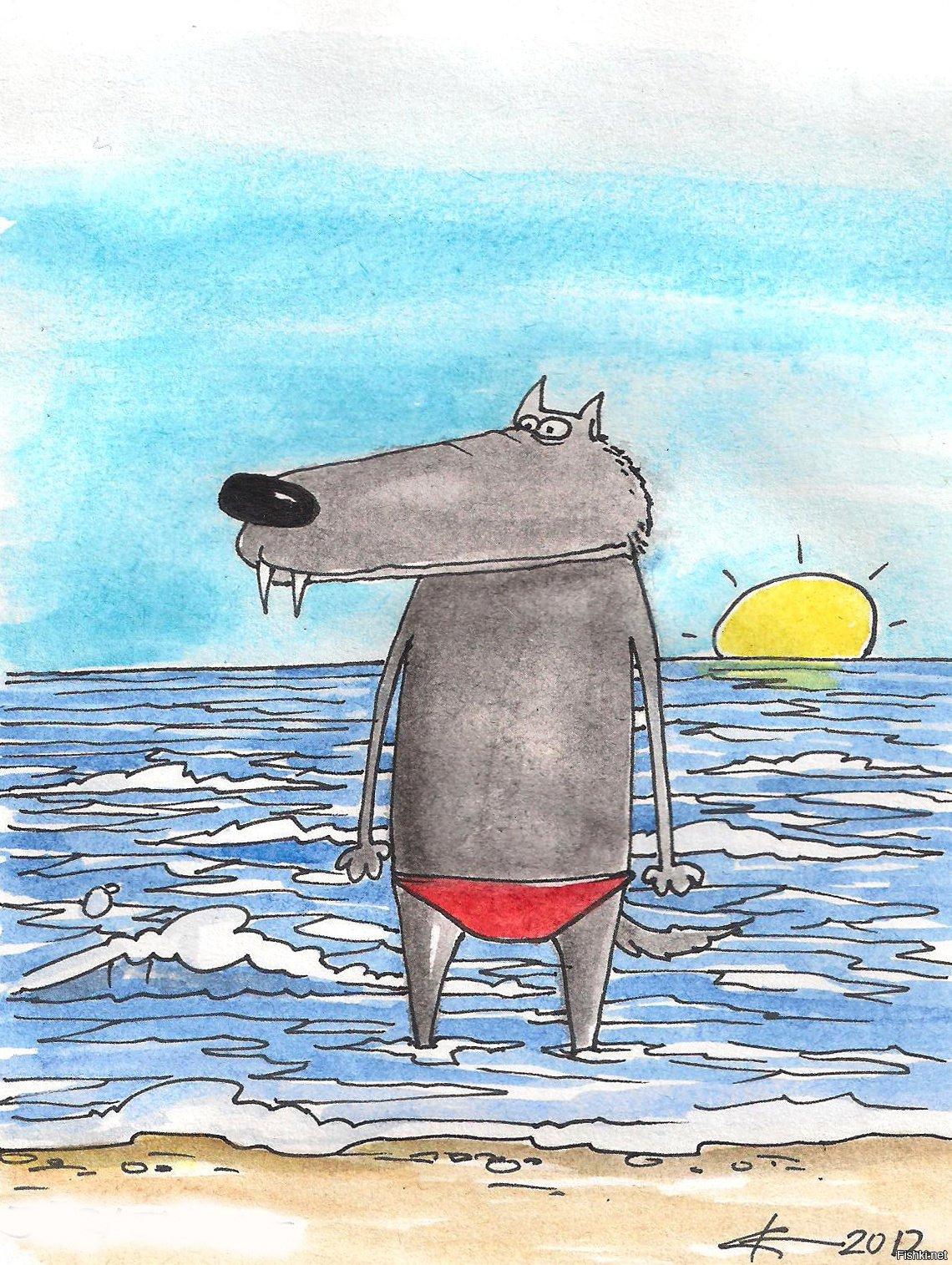 Поздравления свадьбой, морской волк картинки прикольные