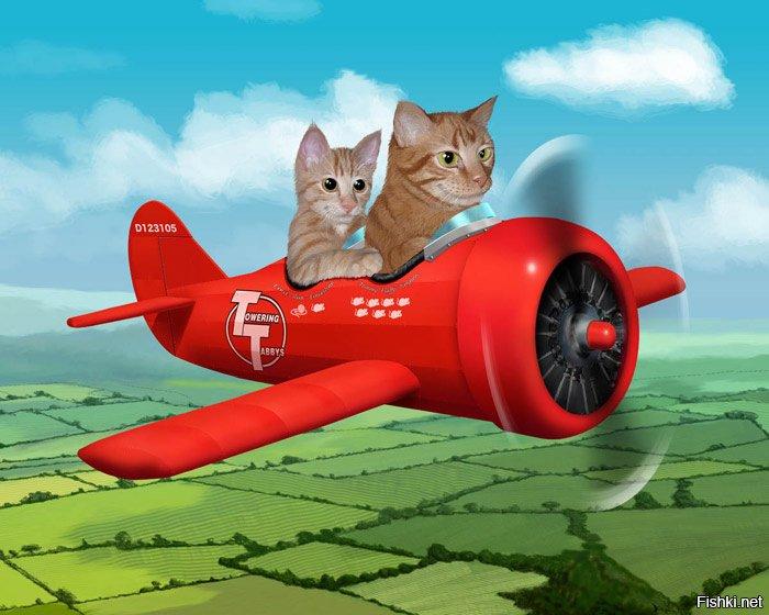 Днем иконы, хорошего полета смешные картинки