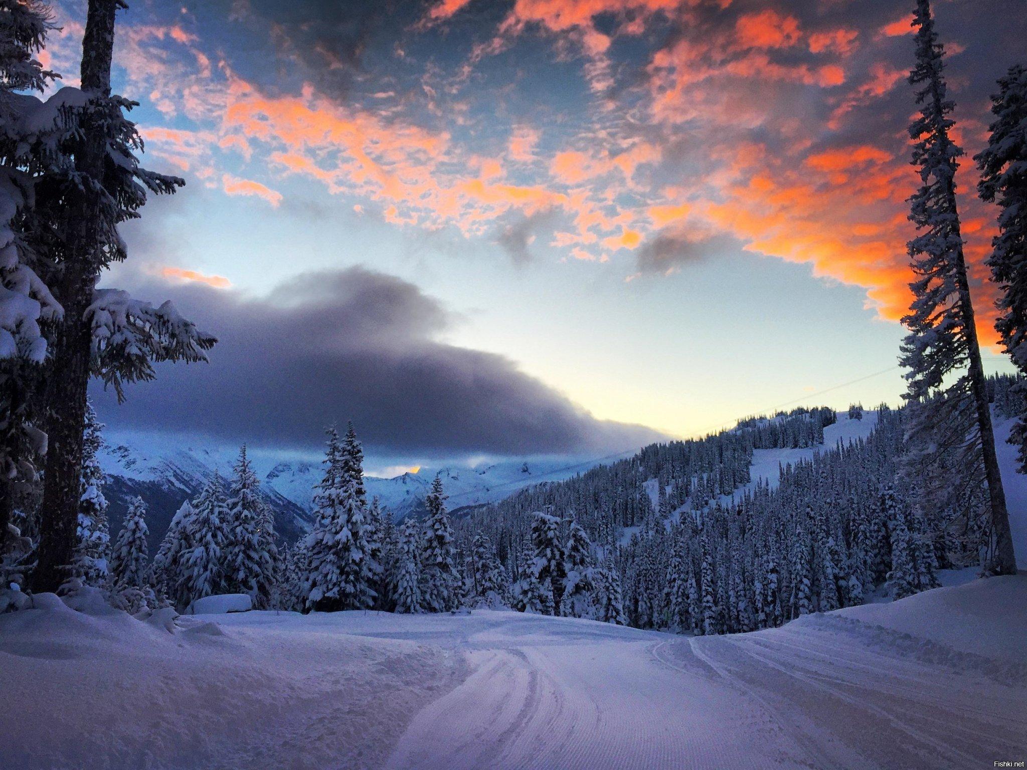фотографии зимнего пейзажа получил оскар можно