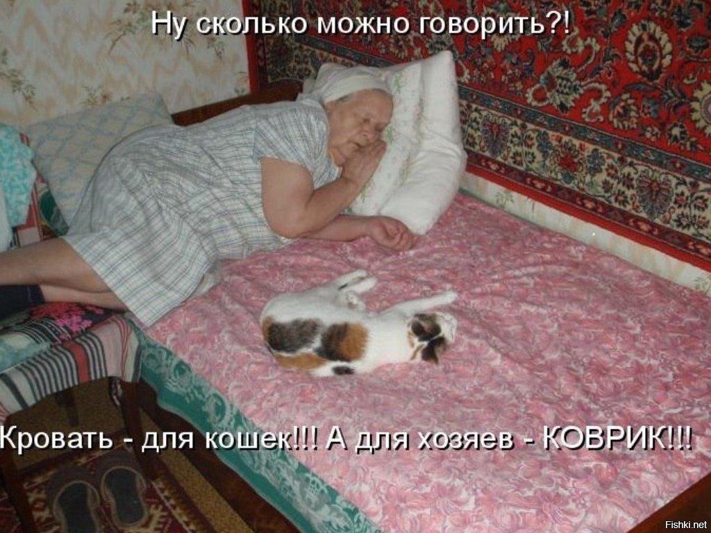 Картинки не ночевал домашних