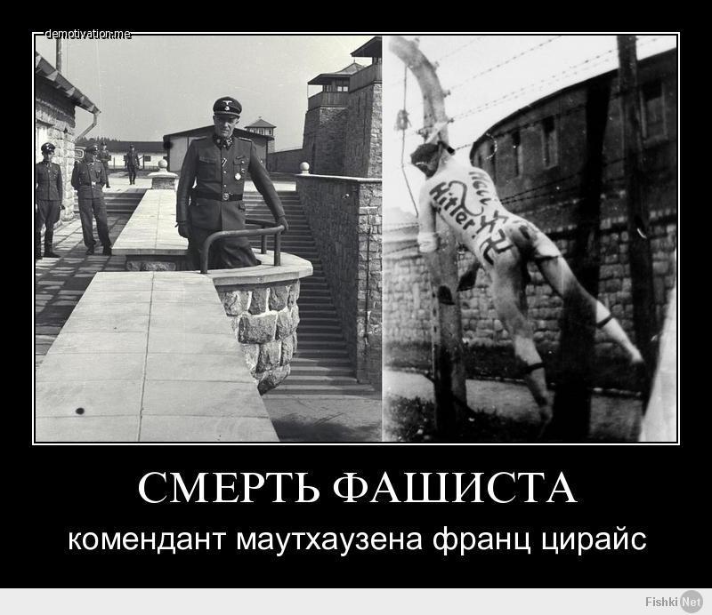 Демотиватор с фашистами