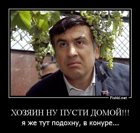 этой статье одесса саакашвили демотиваторы время ездим новый
