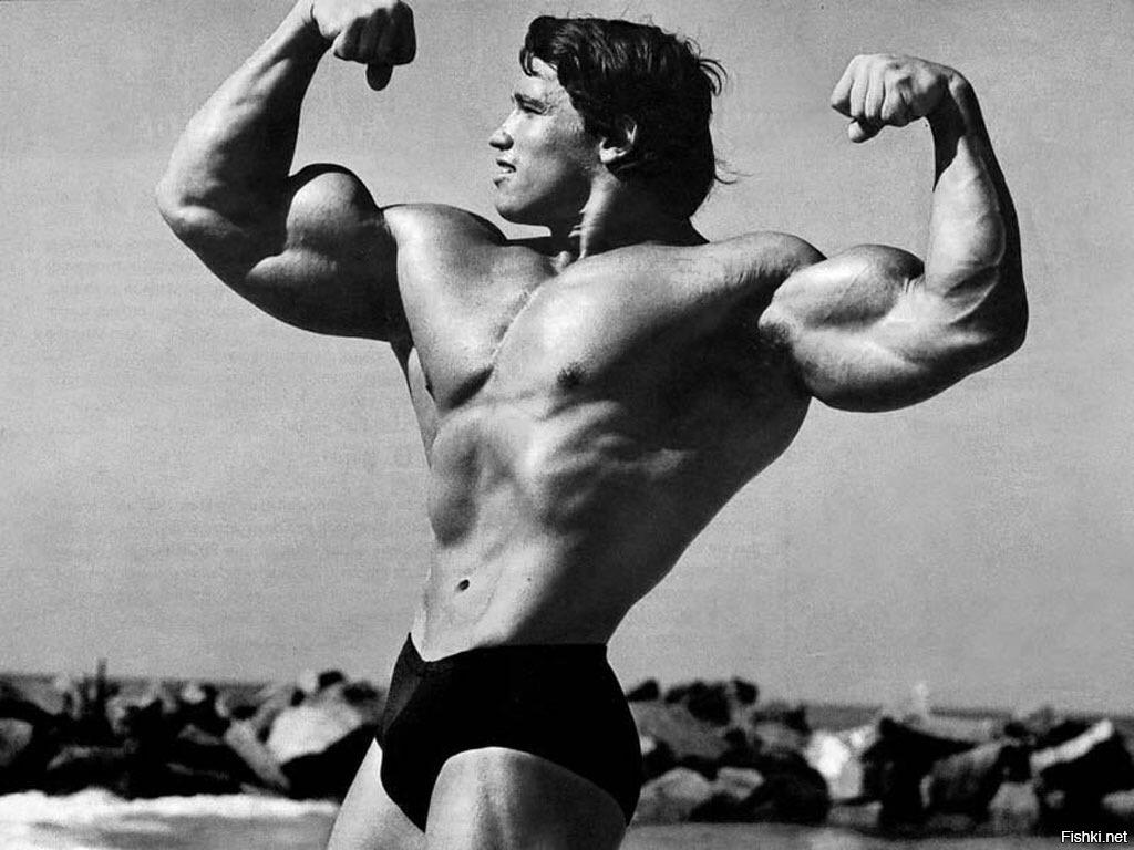 фото арнольда шварценеггера в молодости отличие железобетонного перекрытия