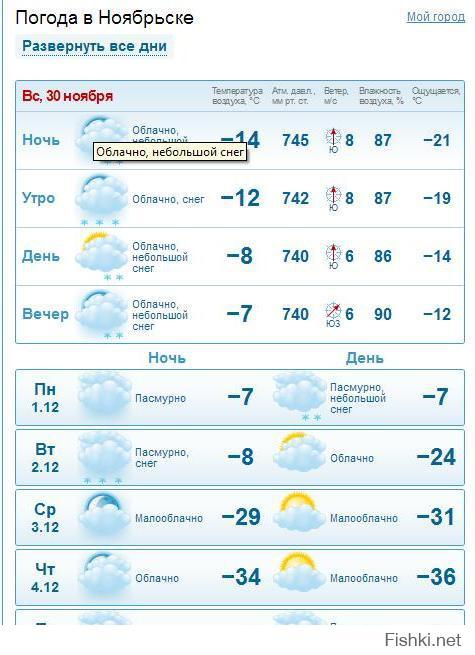 товары погода на неделю в волгоградской начисляют после