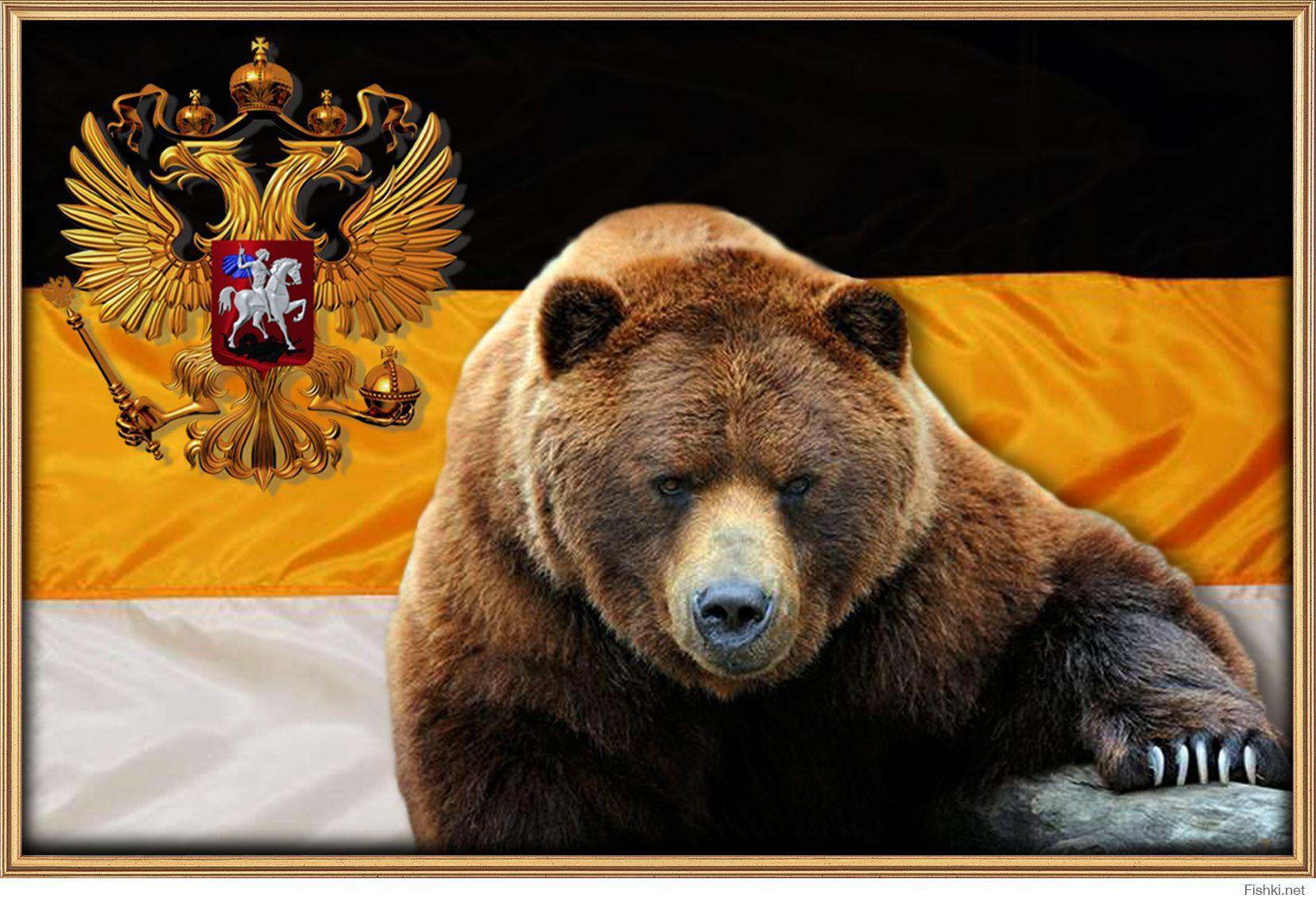 Картинки не буди русского медведя
