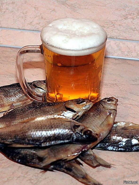 Рыбка с пивом картинки